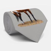 Beautiful Bay Appaloosa Horse Neck Tie