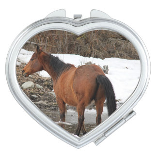Beautiful Bay Chestnut Horse & Winter Pool Makeup Mirror