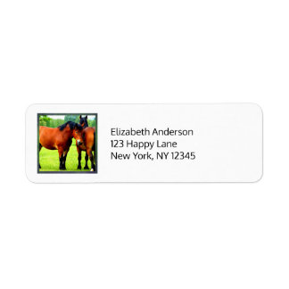 Beautiful Bay Draft Horses In Lush Green Meadow Label