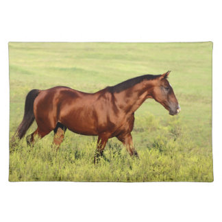 Beautiful Bay Horse Cloth Placemat