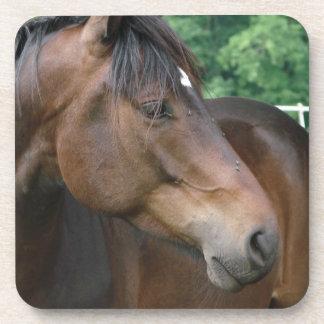 Beautiful Bay Horse Drink Coaster