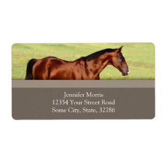 Beautiful Bay Horse Label
