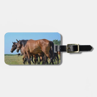 Beautiful Bay Horses Luggage Tag