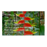 Beautiful Beak shaped Red flower Business Cards