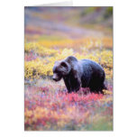 Beautiful Bear in Spring Flowers Greeting Card