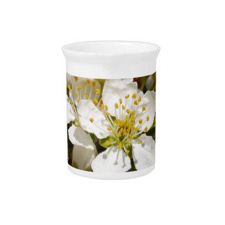 Beautiful bee-flower drink pitchers