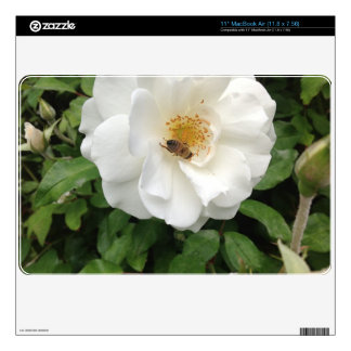 Beautiful Bee On Rose Fine Art Nature Photography MacBook Air Skin