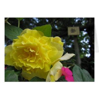 Beautiful Begonia Card