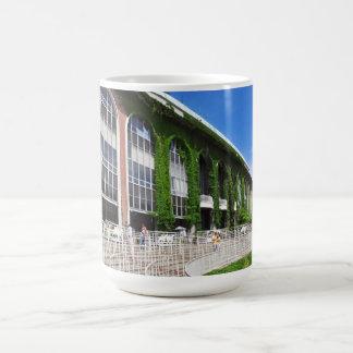 Beautiful Belmont Park Coffee Mug