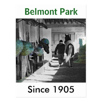 Beautiful Belmont Park Postcard