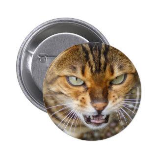 Beautiful Bengal Cat Button