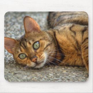 Beautiful Bengal Cat Mouse Pad
