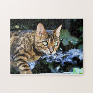 Beautiful Bengal Cat Puzzle