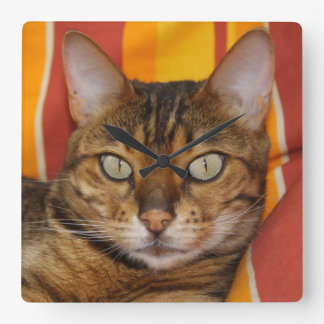 Beautiful Bengal Cat Square Wall Clock