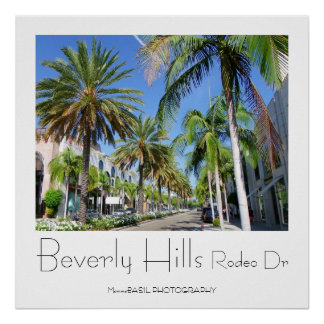 Beautiful Beverly Hills/Rodeo Dr Poster! Poster