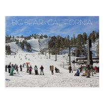 Beautiful Big Bear Postcard! Postcard