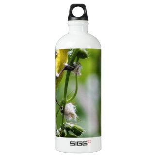Beautiful Bird Aluminum Water Bottle