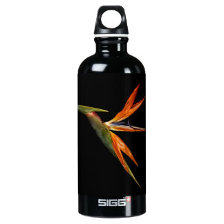 Beautiful Bird of Paradise Flower Floral Photo Aluminum Water Bottle
