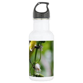 Beautiful Bird Stainless Steel Water Bottle