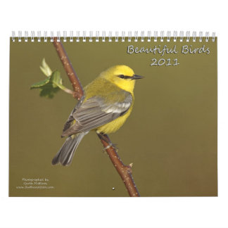 Beautiful Birds 2011 Calendar
