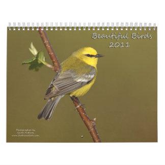 Beautiful Birds 2011 Calendar