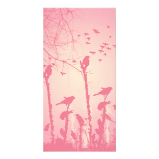 Beautiful Birds in the pink sunset Card