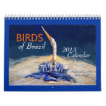 "Beautiful ""BIRDS of Brazil"" 2013 Calendar"