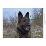 beautiful black and tan German Shepherd puppy Greeting Card