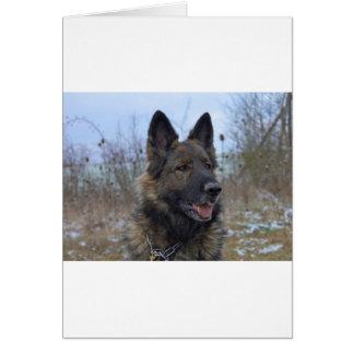 beautiful black and tan German Shepherd puppy Card
