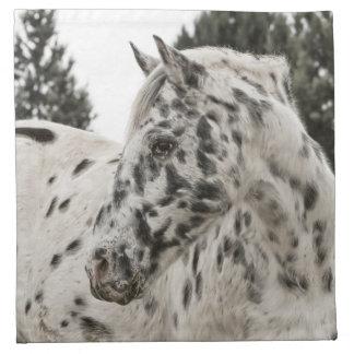 Beautiful Black and White Appaloosa Horse Napkin