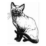 Beautiful black and white artwork - Siamese cat Postcard