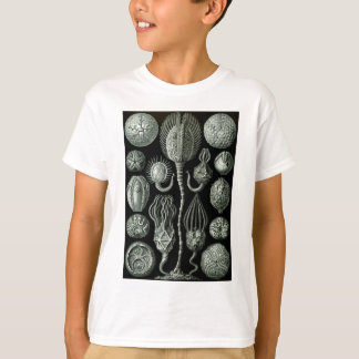 Beautiful black and white cystoids fossil picture T-Shirt