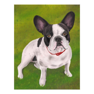 Beautiful Black and white French Bulldog on Grass Letterhead
