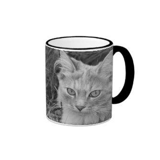 beautiful black and white kitten mug
