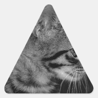 Beautiful Black and White Kitten Triangle Sticker