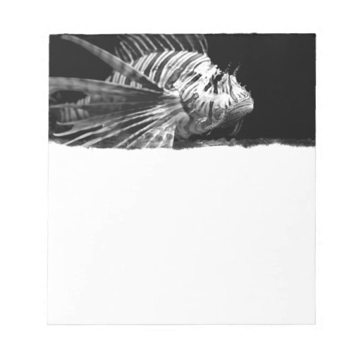 Beautiful Black and White Lionfish Note Pad