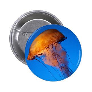 Beautiful Black and White Lionfish Pinback Button