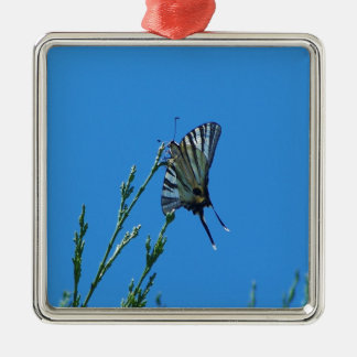 Beautiful Black And White Swallowtail Butterfly Square Metal Christmas Ornament