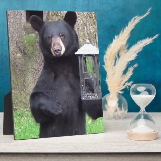 Beautiful Black Bear Plaque