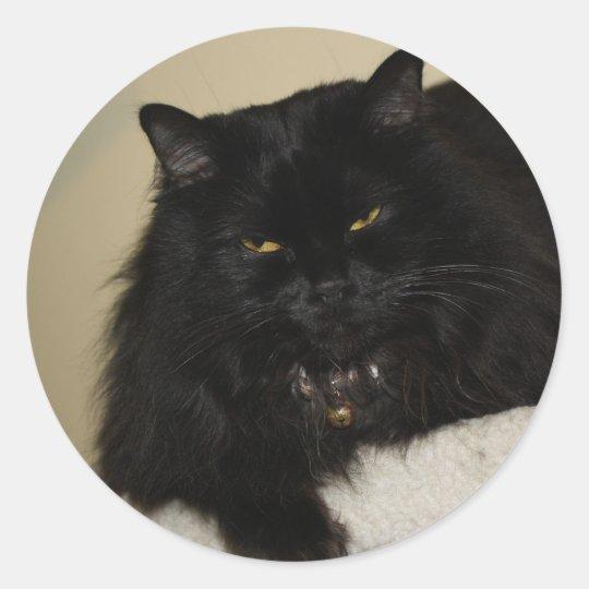 Beautiful black cat classic round sticker