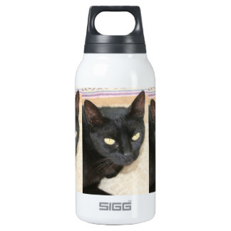 Beautiful Black Cat Portrait Insulated Water Bottle