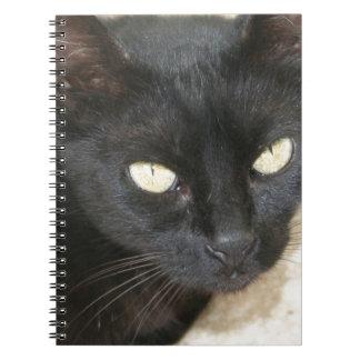 Beautiful Black Cat Portrait Spiral Note Books