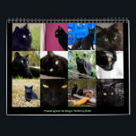 """Beautiful Black Cats 12-month 2018 Wall Calendar<br><div class=""""desc"""">Enjoy this clowder of beautful black cats every day of the year on this useful and decorative calendar for 2018.  Their gorgeous eyes will watch you,  almost begging you to cuddle and stroke their lovely black fur. A wonderful gift for yourself or any cat lover.</div>"""