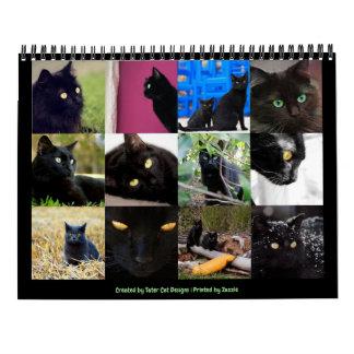 Beautiful Black Cats 12-month 2018 Wall Calendar
