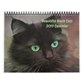 Beautiful Black Cats 12-month 2019 Wall Calendar