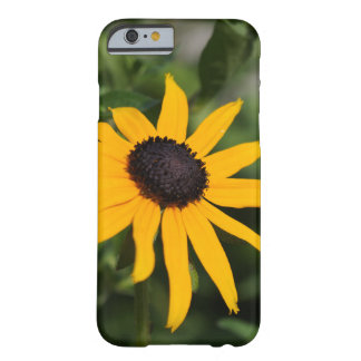 Beautiful Black-Eyed Susan Flower Barely There iPhone 6 Case
