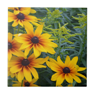Beautiful black eyed susan flower garden ceramic tile
