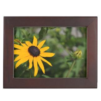 Beautiful Black-Eyed Susan Flower Memory Box