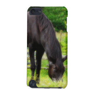 Beautiful Black Horse iPod Touch 5G Case