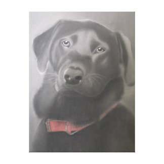 """Beautiful Black Labrador "" Charcoal Drawing Canvas Print"